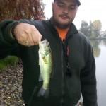 Un piccolo bass