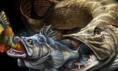 Pescare che passione