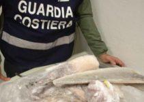 Controlli sulla pesca a montecatini