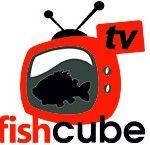 fish-cube-tv