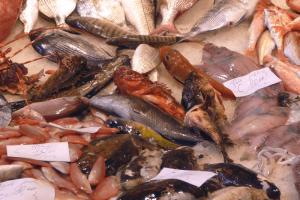 Pesce_al_mercato