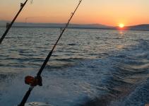 pesca-in-mare