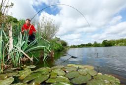 La pesca su una verga un torrente