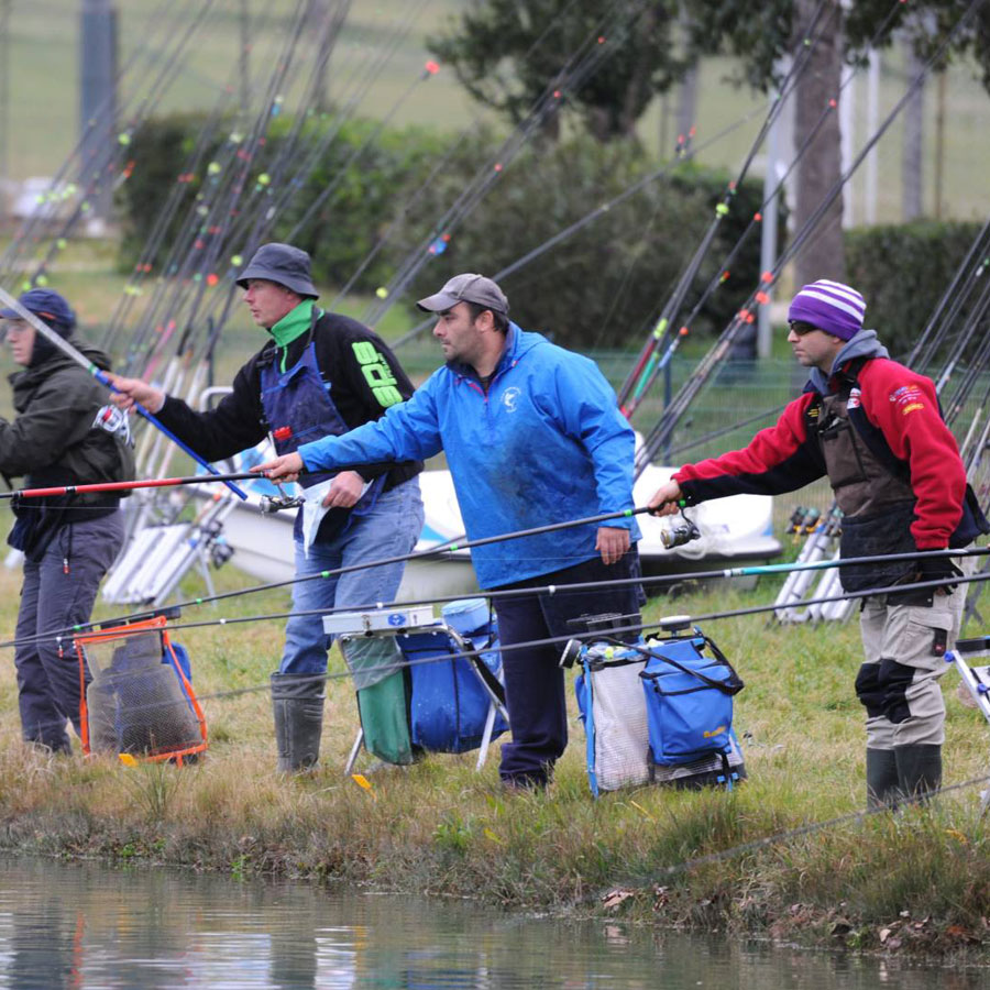 Pesca alla trota in laghetto gli accessori indispensabili for Accessori laghetto