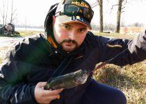 a pesca con molix sb80
