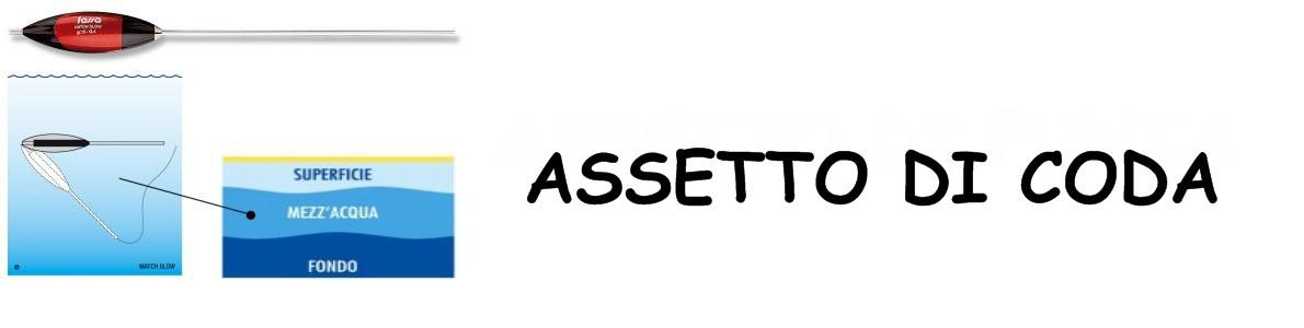 assetto_di_coda