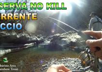 TEAM IELLA - Riserva No Kill Torrente Laccio