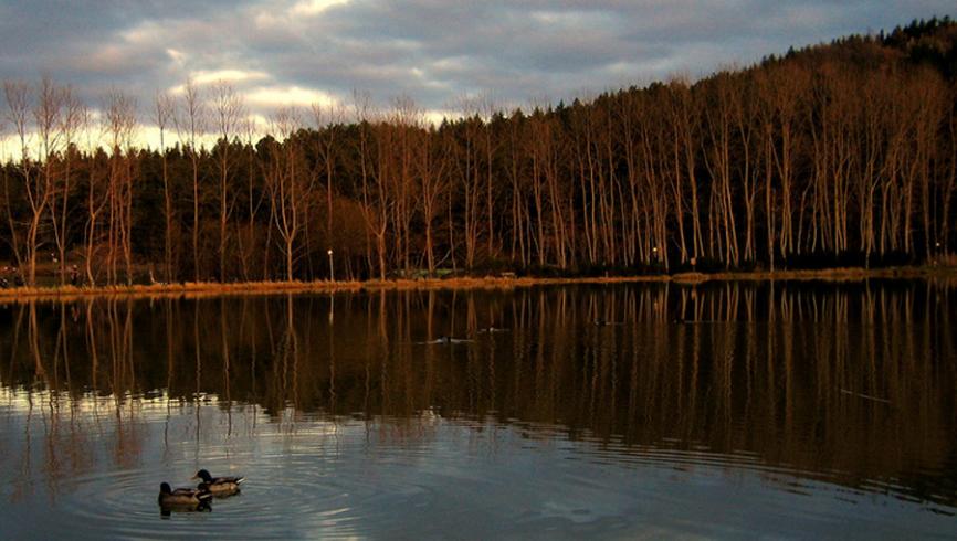 lago-acquapartita