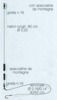 montatura con olivette spaccate