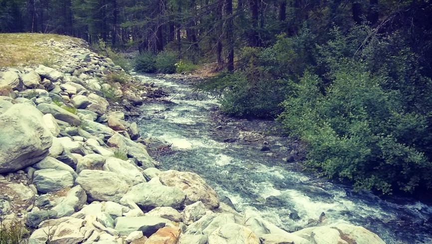 Pescare in torrente
