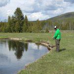 Pesca alla trota nel gibbon river