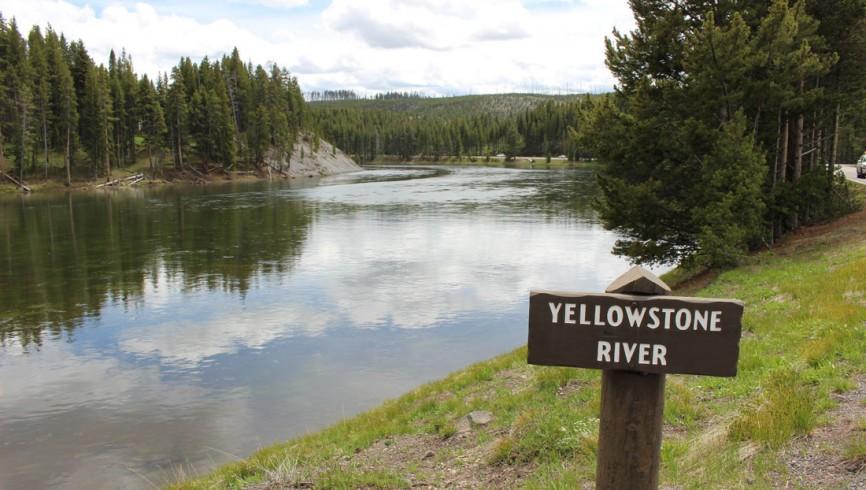 pesca-yellowstone-river