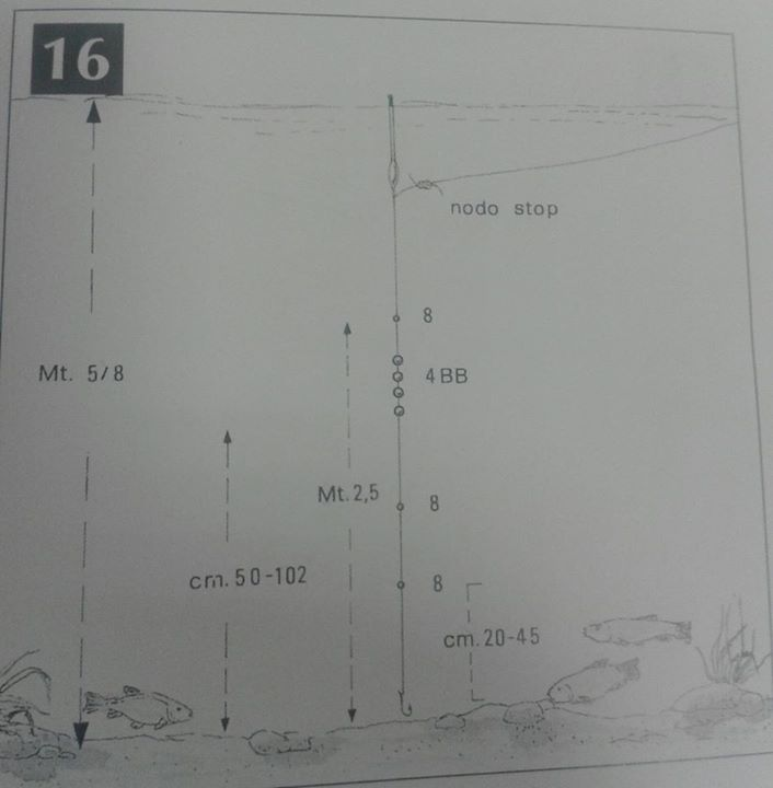 lenza pesca inglese