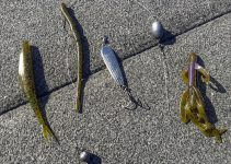 Le esche da usare per pescare in inverno